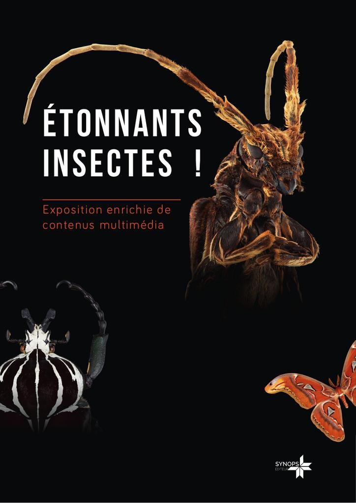 Etonnants insectes / Synops |