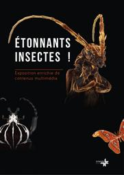 Etonnants insectes / Synops | Synops